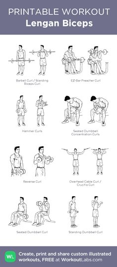 Lengan Biceps – my custom workout created at WorkoutLabs.com • Click through to download as printable PDF! #customworkout
