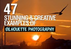 47 Stunning and Creative Examples of Silhouette Photography