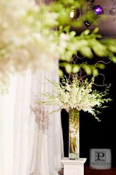 Ceremony flowers.Tall arrangements of orchids and curly willow. Classic.   Cherry Blossom Events
