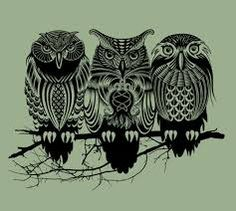 Image result for owls drawings