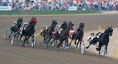 Harness Racing - Little Brown Jug - Deleware, OH