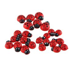 Self Adhesive Lady Bug Wooden Favors, 3 Size, 24-pack