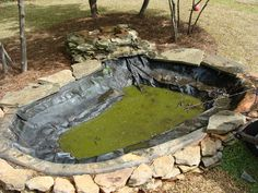 The Walker Family: Backyard Pond -Before and After