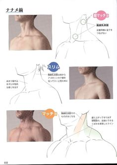 Reference Guide for Drawing Male Muscles – 160 фотографий