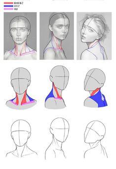 Drawing body proportions anatomy sketch 37 ideas for 2019 - - Drawings body Drawing body proportions anatomy sketch 37 ideas for 2019 Anatomy Sketches, Anatomy Art, Art Sketches, Art Drawings, How To Draw Anatomy, Human Anatomy Drawing, Pencil Drawings, Zbrush Anatomy, Head Anatomy