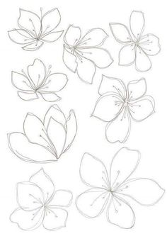 new Ideas flowers drawing design new Ideas flowers drawing design plants Cherry sakura blossom floral seamless pattern Vector Image Bobbie Print: Flower drawings - - Drawing Step By Step Butterfly Tutorials 43 Ideas Spring cherry blossom wallpaper Flower Pattern Drawing, Flower Drawing Tutorials, Flower Sketches, Floral Drawing, Art Tutorials, Art Sketches, Drawing Flowers, Flower Drawings, Flowers To Draw