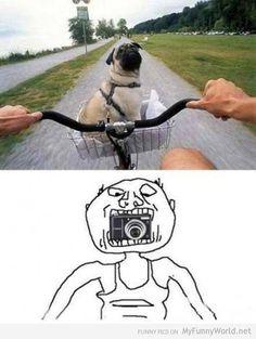 hahaha really!