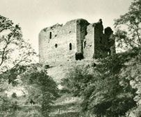 The original name of the STEWART FAMILY was FITZ-ALAN. Alain was Grandson of Alain, Dapifer (Steward) to the Archbishop of Dol (Brittany) and was invited to England by Henry the 1st, he held an estate in Shropshire and died in 1114. His son Walter returned to Scotland along with David the 1st in 1141. He was granted estates in Renfrew and Kyle and was made Steward of Scotland. This office was made hereditary in 1158 and it would eventually lead to the family being refered to as the Stewarts.