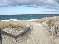 Path to Race Point Beach, Provincetown, Winter, Credit: William DeSousa-Mauk