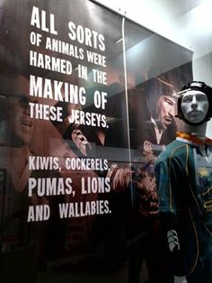 South African Rugby Museum - Cape Town Tourism