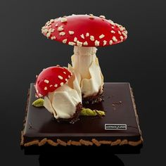 Patisserie Source by admey Gourmet Desserts, Desserts To Make, Mini Desserts, Plated Desserts, Beautiful Desserts, Beautiful Cakes, Amazing Cakes, Chocolate Showpiece, Chocolate Art