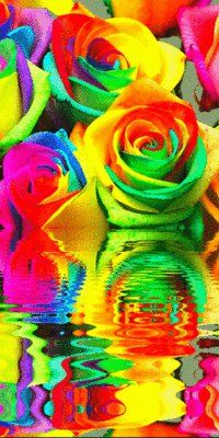 color explosions - Google Search