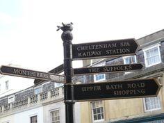 The Cheltenham Pigeon