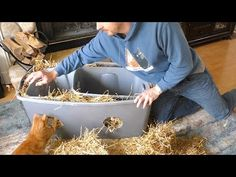 DIY Outdoor Cat Shelter - YouTube
