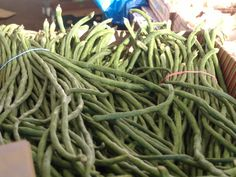 Long Bean, Runner Beans, Exotic Fruit, Grow Your Own Food, Fruits And Vegetables, Farmer, Green Beans, Schools, Seeds