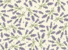 drawer lining lavender scented paper