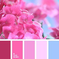 azul claro fuerte, celeste vivo, color azul celeste, color carmesí vivo, color fucsia, combinación contrastante del rosa y carmesí, combinación de colores, elección del color, frambuesa, matices de color fucsia, rosado vivo, tonos rosados.