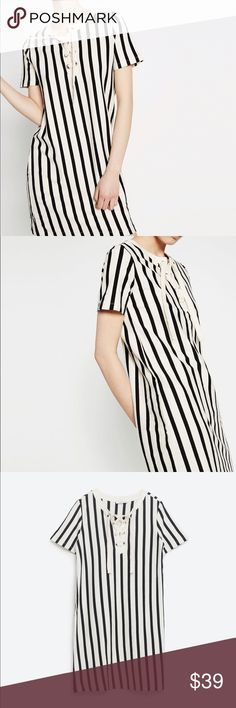 Vertical striped dress with cords Round neck.. cord detail on front.. comfy knit material... fits about size 4... brand new with tag Zara Dresses Mini