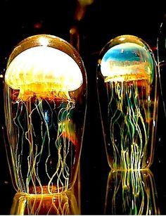 amazing blown glass jellyfish