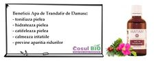 Beneficii Apa de Trandafir de Damasc: - tonifiaza pielea - hidrateaza pielea - catifeleaza pielea - calmeaza iritatiile - previne aparitia ridurilor Deodorant