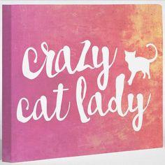 "One Bella Casa Crazy Cat Lady Gaphic Art on Canvas Size: 16"" H x 20"" W x 2"" D"