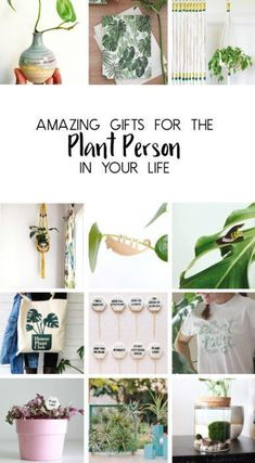 Amazing Gifts For The Plant Person In Your Life! From planters to accessories and more! #plants #indoorplants #houseplants #plantlady #giftideas
