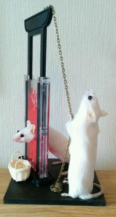 Taxidermy Mouse Mice guillotine murder crime Unusual Gift Display Steampunk Pet | eBay