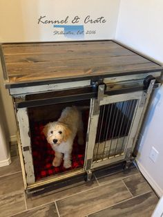Dog Room Crate Ideas Dogroomcrateideas Luxury Dog Kennels Cheap Dog Kennels Dog Crate
