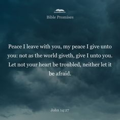 Peace I leave with you; my peace I give you. I do not give to you as the world gives. Do not let your hearts be troubled and do not be afraid.
