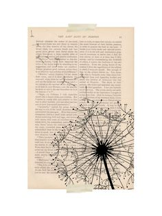 DANDELION no. 2 floral dictionary art print - dandelion flower blowing in the wind on Etsy, $9.98 AUD