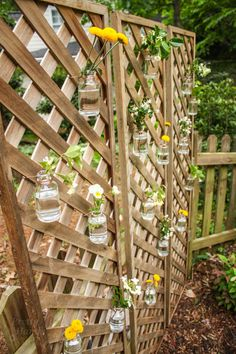 Create A Living Wall Lattice Privacy Screen. Fence IdeasPatio ...