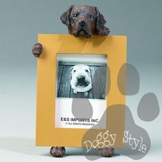 Chocolate Labrador Dog Holding Picture Frame http://doggystylegifts.com/products/chocolate-labrador-dog-holding-picture-frame