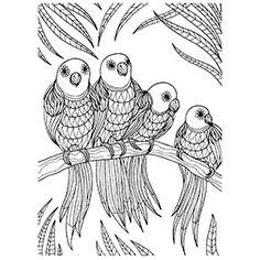 Colouring In Sheets - Art & Craft   Art Supplies   Craft Supplies   Kid's Craft & Art   Craft Projects   Art Materials   School Art Supplies