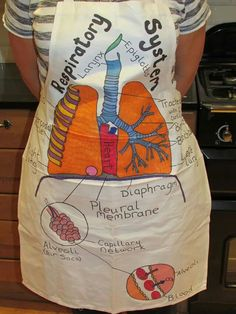 Respiratory system. Sharpie pens on an apron. Can be positioned to show organ position. Teaching science