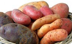 Die Kartoffel – Basisch, gesund und heilsam -> https://www.zentrum-der-gesundheit.de/kartoffeln.html #gesundheit #ernaehrung #kartoffel