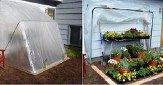 How to DIY Build a Fold-Down Greenhouse