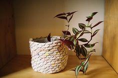 New Friends plant cosy  Web shop