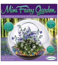Glass Terrarium - Mini Fairy GardenGlass Terrarium - Mini Fairy Garden,