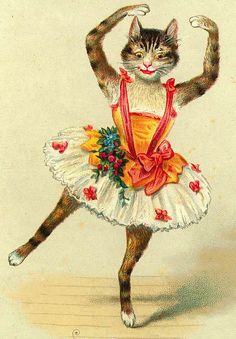 The Man Who Loved Cats Dancing #vintage #image