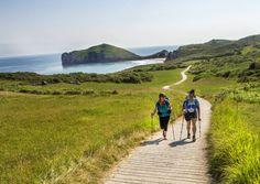 El Lebaniego, el de la Costa, el Primitivo y el Vasco-Riojano. Cuatro rutas declaradas patrimonio mundial por la Unesco