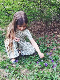 all little girls forage violets from the yard