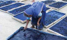 india ~ drying indigo paste ~