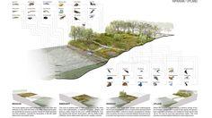 RiverFirst | TLS Landscape Architecture