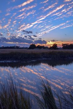 Sunset on Sapelo Island, Georgia. Of all of the east coast states of the U.S., Georgia has probably done the best job of preserving the character of its coastline. Several of the islands of the coast, such as Cumberland, St. Catherines, and Sapelo (pictured) aren't accessible by road or bridge, and mingle almost imperceptibly with the salt marshes around them. #exploregeorgia #georgia #sapelo