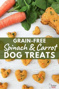 dog treats homemade Grain-Free Spinach and Carrot Dog Treats Dog Biscuit Recipes, Dog Treat Recipes, Healthy Dog Treats, Pet Treats, Dog Treats Grain Free, Grain Free Dog Food, Carrot Dogs, Pumpkin Dog Treats, Sweet Potatoes For Dogs