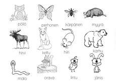Metsäretki sekä metsäneläintehtäviä ja -leikkejä – Suomi-koulussa Finnish Language, Finland, Kindergarten, Homeschool, Moose Art, Teaching, Comics, Cards, Animals