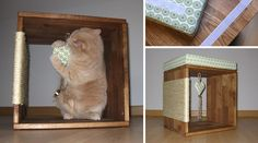 Letzter Schliff - Liegekissen und Katzenspielzeug befestigen