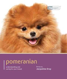This dog expert guide gives you all the information you will need to provide your Pomeranian with the care and training that will enable him to lead a happy and fulfilling life. Written by experts, th