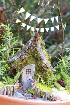 a fairy garden for Lucy - alisaburke