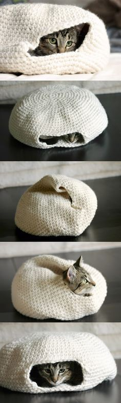 Quick, someone who can crochet, make this for me. I'll pay for it!! Crochet cat bed- it's like a bag and a bed all in one.
